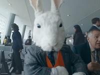 Un conejo blanco atrae a los pasajeros de negocios a EasyJet