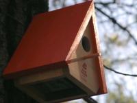 Generali y las casetas de pájaros que detectan incendios forestales